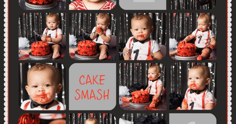 smash the cake : Loris